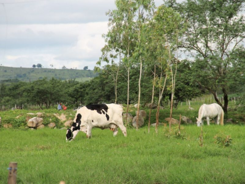 Comunidades rurais de Riachão do Dantas ganham acesso à agua para consumo e irrigação
