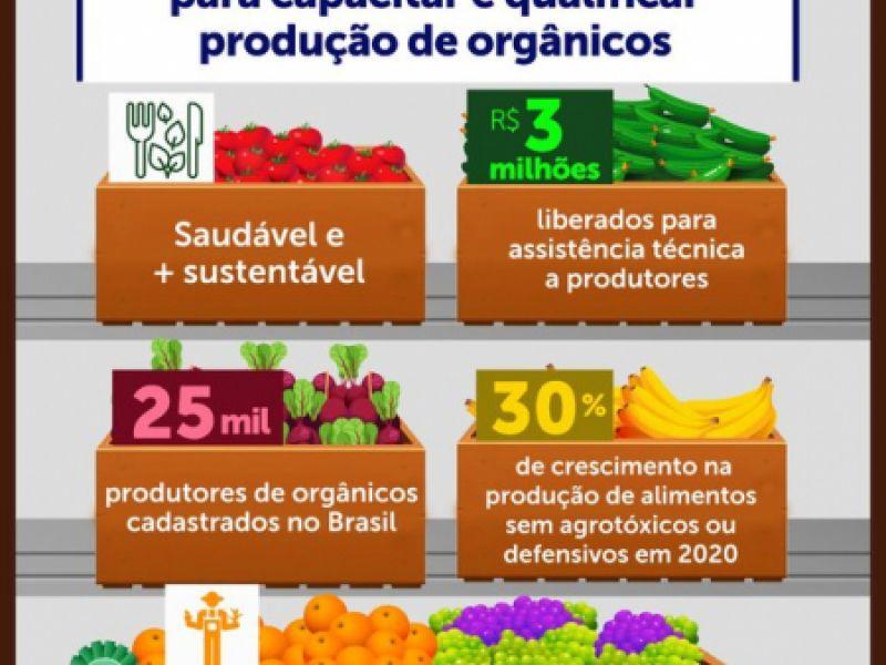 Governo garante R$ 3 milhões para capacitação e ampliação de produção de alimentos orgânicos