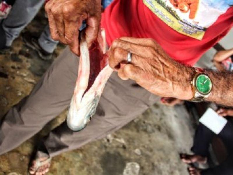 MPF vai recorrer da sétima suspensão de segurança concedida pelo TRF1 em favor de Belo Monte