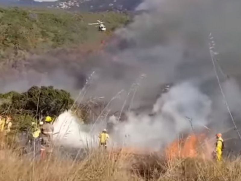 Incêndio de grandes proporções devasta 60% da vegetação em São Paulo