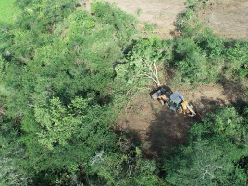 Adema e PM flagram desmatamento em Divina Pastora e impedem infração