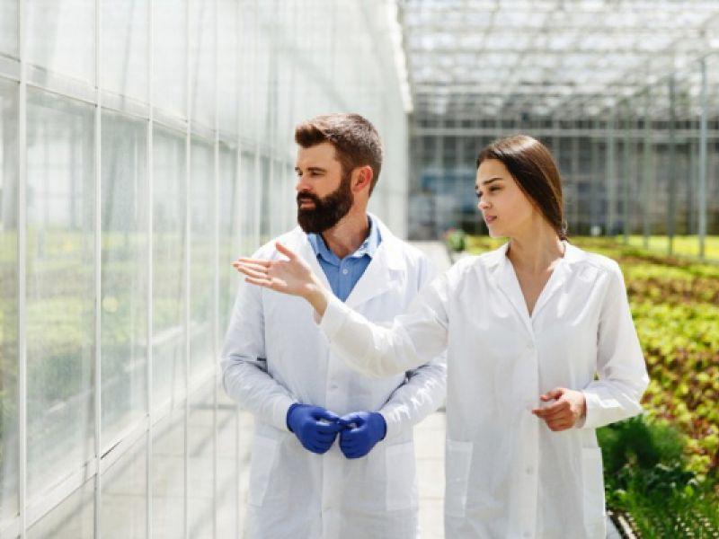 MCTI lança edital para projetos de pesquisa de contribuição ao desenvolvimento científico
