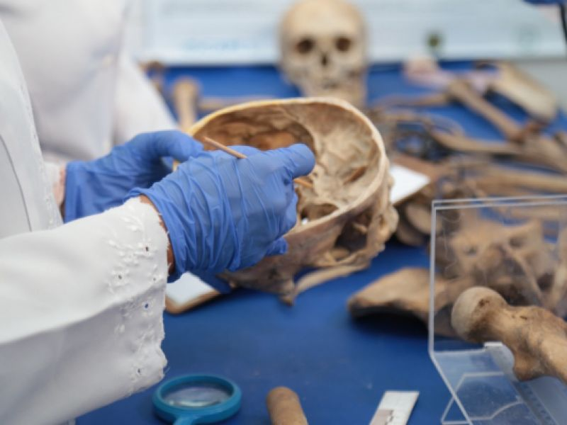 Antropologia Forense do IML identifica corpos e ossadas em avançado estado de decomposição