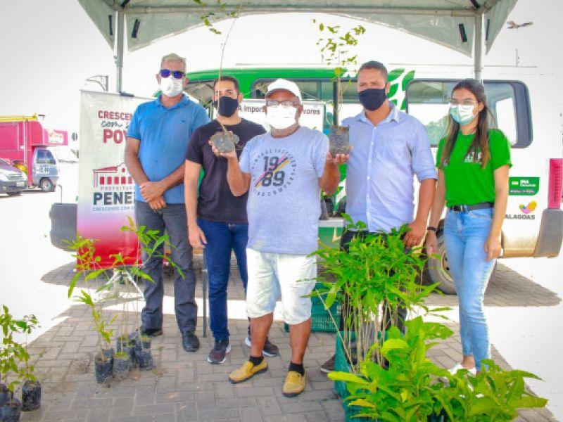 Município de Penedo comemora Dia da Árvore com doação de espécies nativas