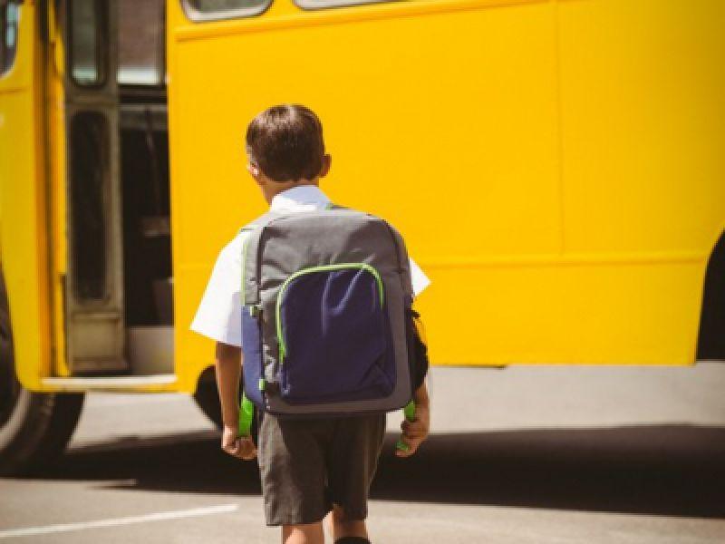 FNDE já liberou R$ 369,66 milhões do Pnate para manutenção do transporte escolar no ano de 2021