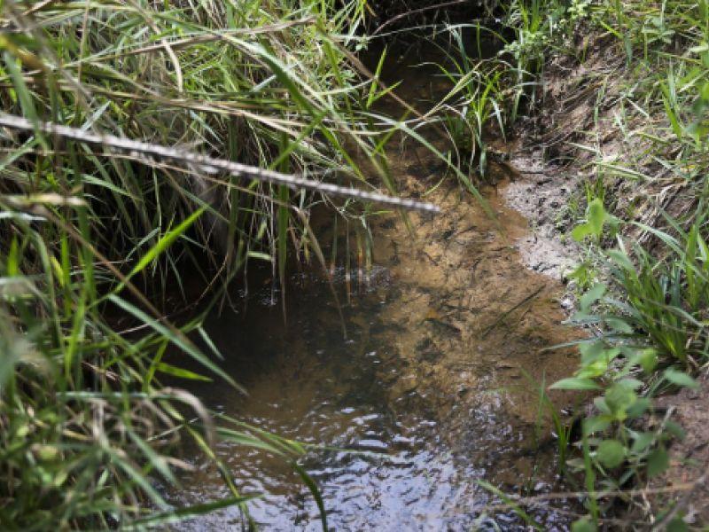 IBGE e ANA lançam dados para orientar análises de recursos hídricos no Brasil
