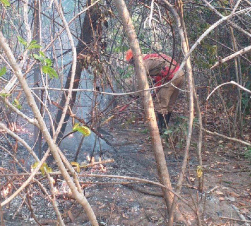 Chuva desta sexta (24) ajuda a apagar incêndios na Chapada dos Veadeiros