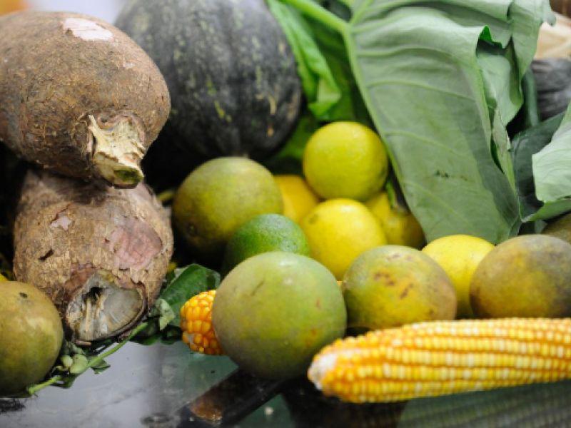 Dia Mundial do Vegetarianismo: No Brasil, 14% da população se considera vegetariana