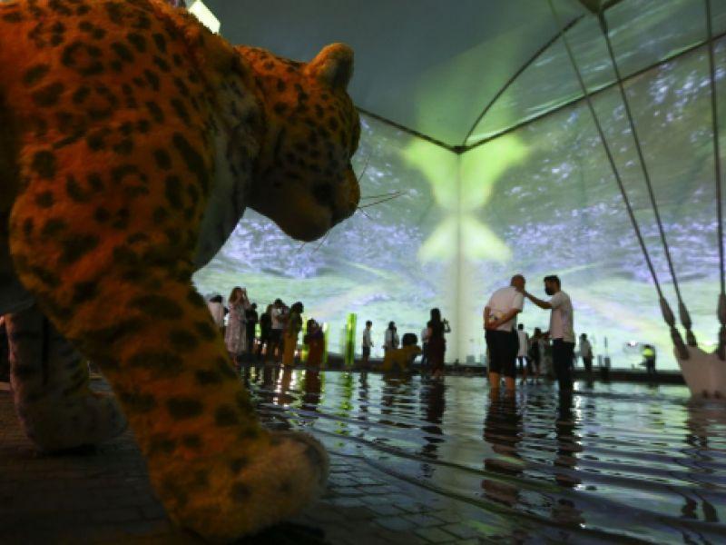 Pavilhão do Brasil recebeu 12 mil visitantes em três dias da Expo 2020