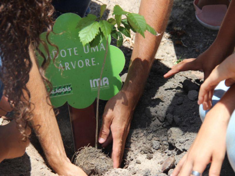 Abertura Nossa Praia 2021: IMA presenteia com mudas a quem levar materiais recicláveis